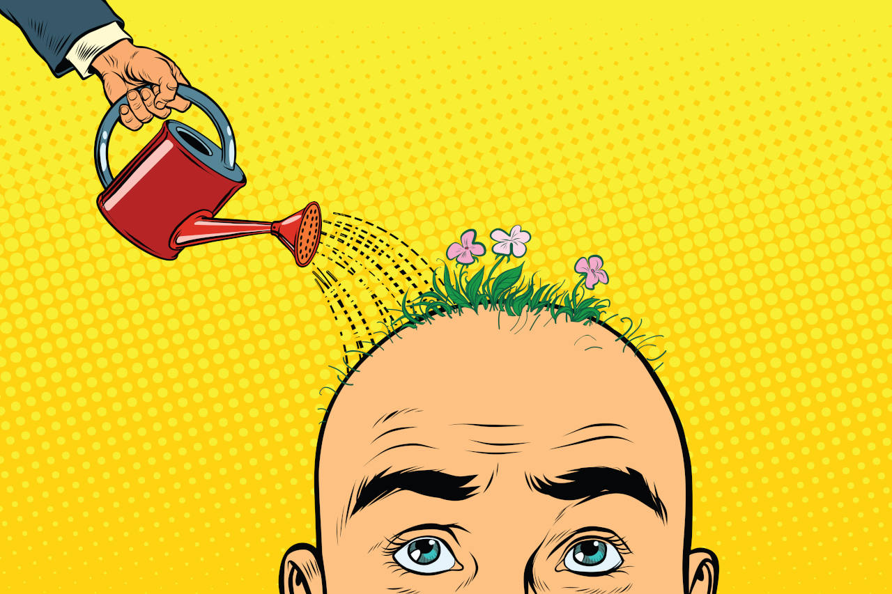 Illustration of a man getting his head watered to regrow lost hair